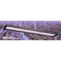 GROWSPEC PN240